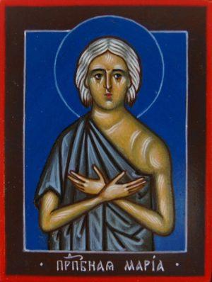 Икона Преподобная Мария
